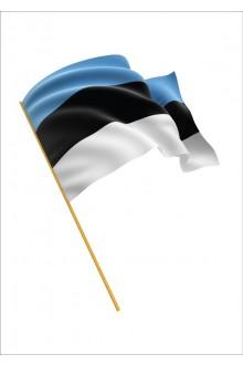 Eesti Vabariigi mastilipp 6 meetrisele mastile