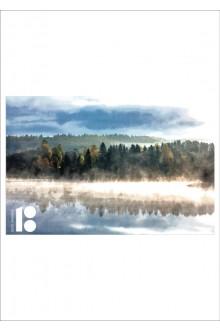EV100 postkaart metsa pildiga