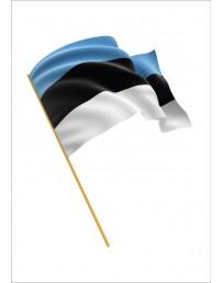 Eesti Vabariigi mastilipp 9 meetrisele mastile