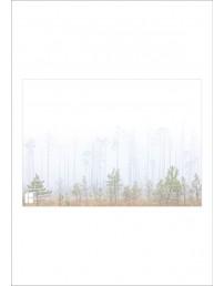 Ümbrikud 162 x 229 mm, 50 tk, metsa pildiga