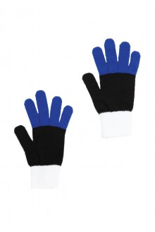 Gloves in the colours of the Estonian flag