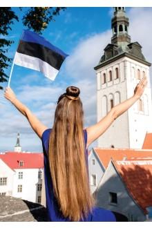 Estonian hand-held flag made from flag fabric, 20x15 cm, 10 pcs