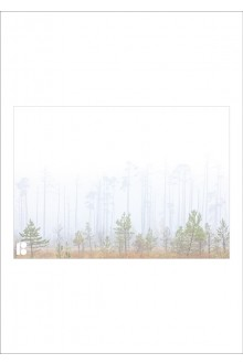 Envelopes with a picture of forest, 162 x 229 mm, 10 pcs