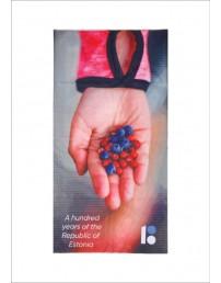 "Tube scarf ""Berries"", 50 pcs"