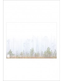 Envelopes with a picture of forest, 162 x 229 mm, 50 pcs