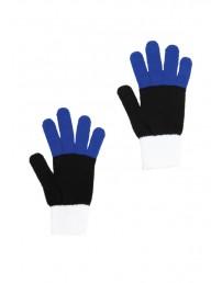 Перчатки в цветах флага Эстонии