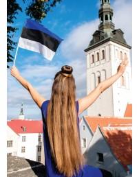 Флажок Эстонской Республики из флажной ткани, 20x15 см, 10 шт.